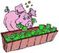 pig_trough money
