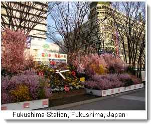 fukushimastation1.jpg